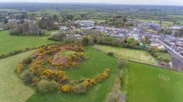 Kilfinane Motte, County Limerick Banner Photo