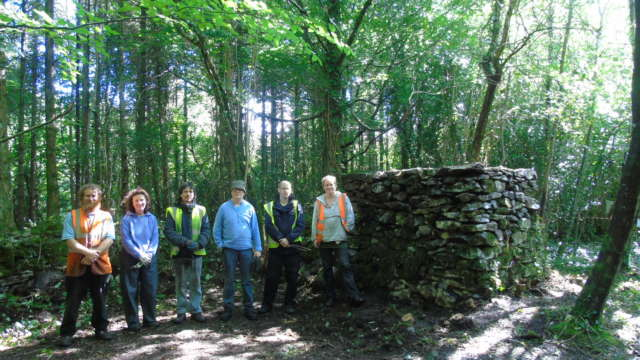 Merlin Park Woods Heritage Conservation and Woodland Coppicing Research 2017 Banner Photo