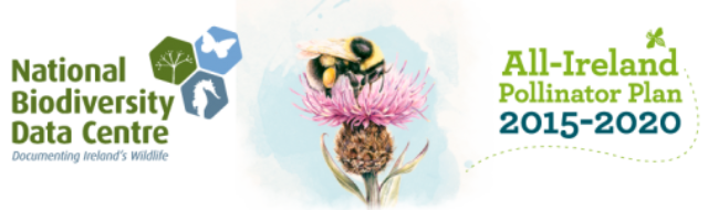 Kilkenny County Council is first local authority to sign up to Pollinator Plan Banner Photo
