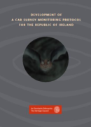 Development of a Car Survey Monitoring Protocall for Ireland