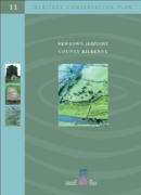 Newtown Jerpoint, County Kilkenny: Conservation Plan
