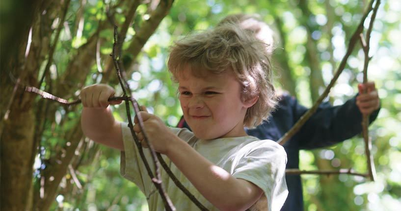 Pupils can enjoy a field trip to a local park or woodland with a Heritage Expert.